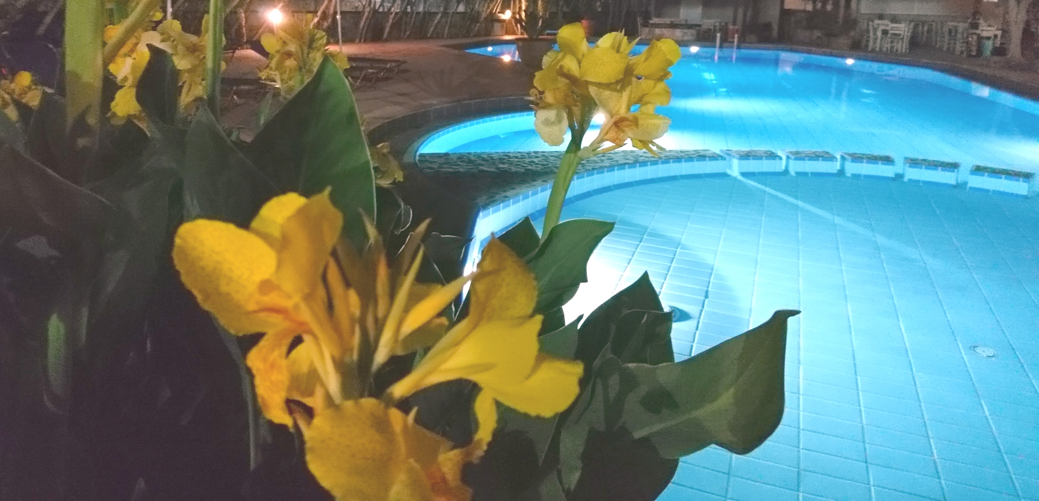 Lefka apartments pool in the night